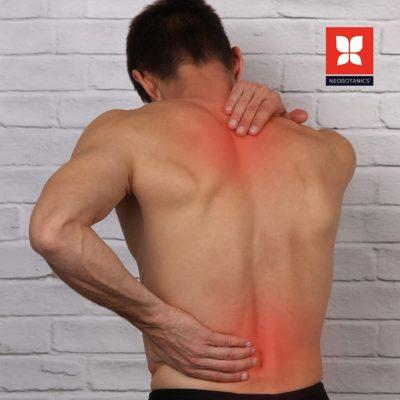 Schmerzgel – Die 5 besten Schmerzgele im Überblick